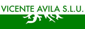 Vicente Ávila